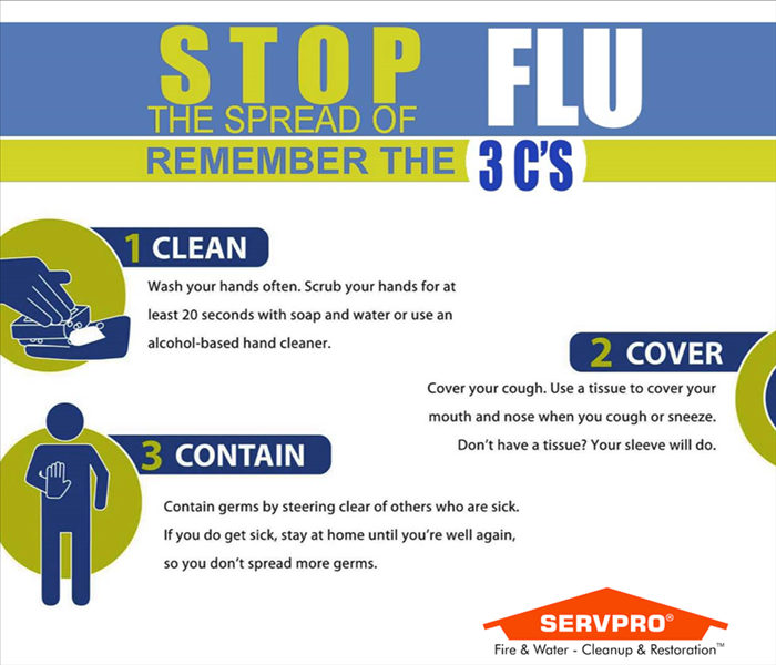 Cleaning Flu Season