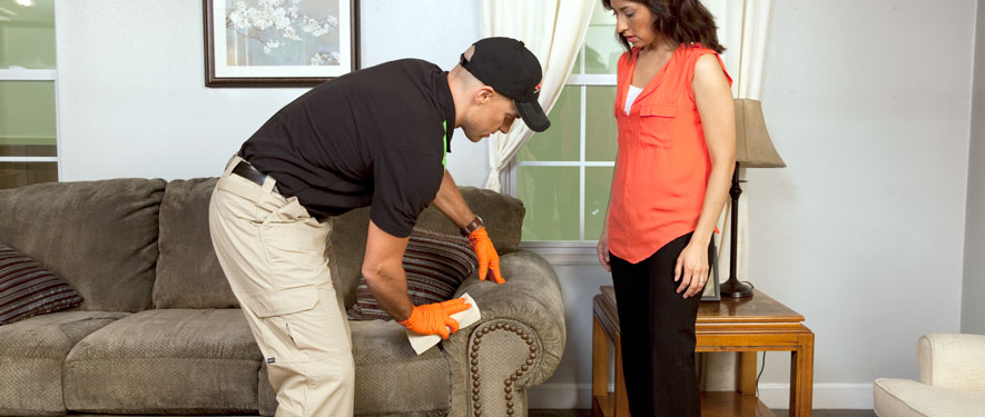 Aberdeen, WA carpet upholstery cleaning
